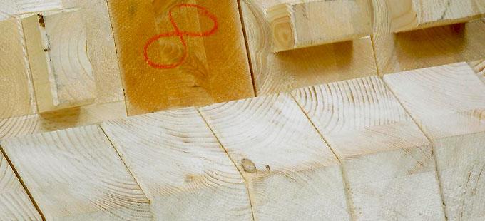 verwendete Holzarten Holzbau Steinbach GmbH